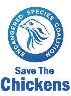 Save the Chickens... Or NOT!!! The choice is yours
